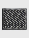 Alexander McQueen Skull Pashmina Scarf Picture