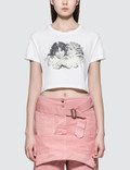 Fiorucci Tavi Angels Cropped Short Sleeve T-shirt Picture