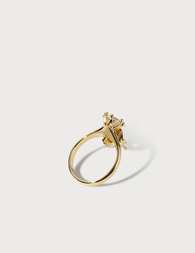 D'heygere Ear / Ring