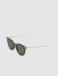 Native Sons Siegel 18k Gold with G-15 Lens