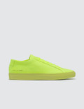 Common Projects Original Achilles Low Fluo Sneaker Picutre