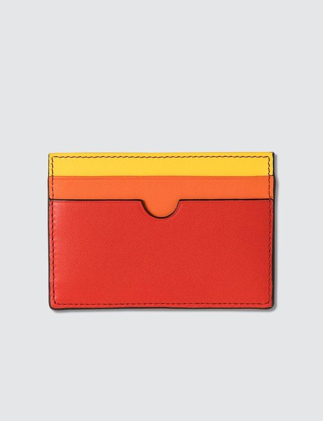 Loewe Rainbow Plain Cardholder