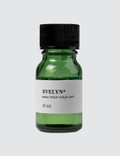 Retaw Evelyn Fragrance Oil Picture