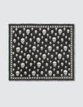 Alexander McQueen Skull Print Scarf Picture