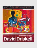 Rizzoli David Driskell: Icons of Nature and History Picutre