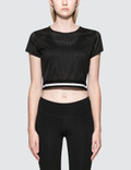Calvin Klein Performance Stripe Hem Crop Top Picutre