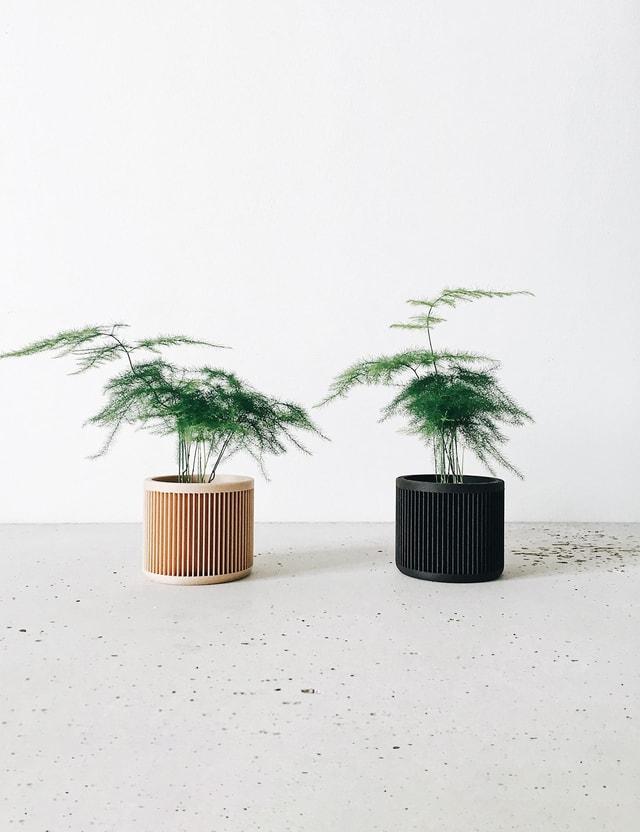 Minimum Design Set of 2 – Japan Multicolor Life