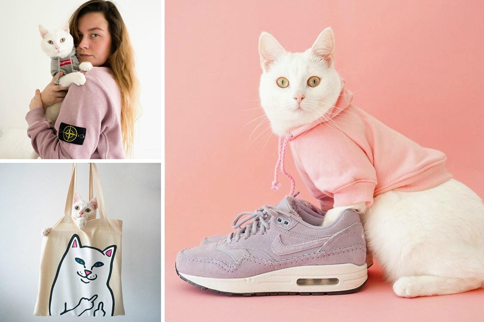 HYPEBAE Favorite Instagram Yuka Mannami Zappa the Cat Violette Cecy Young