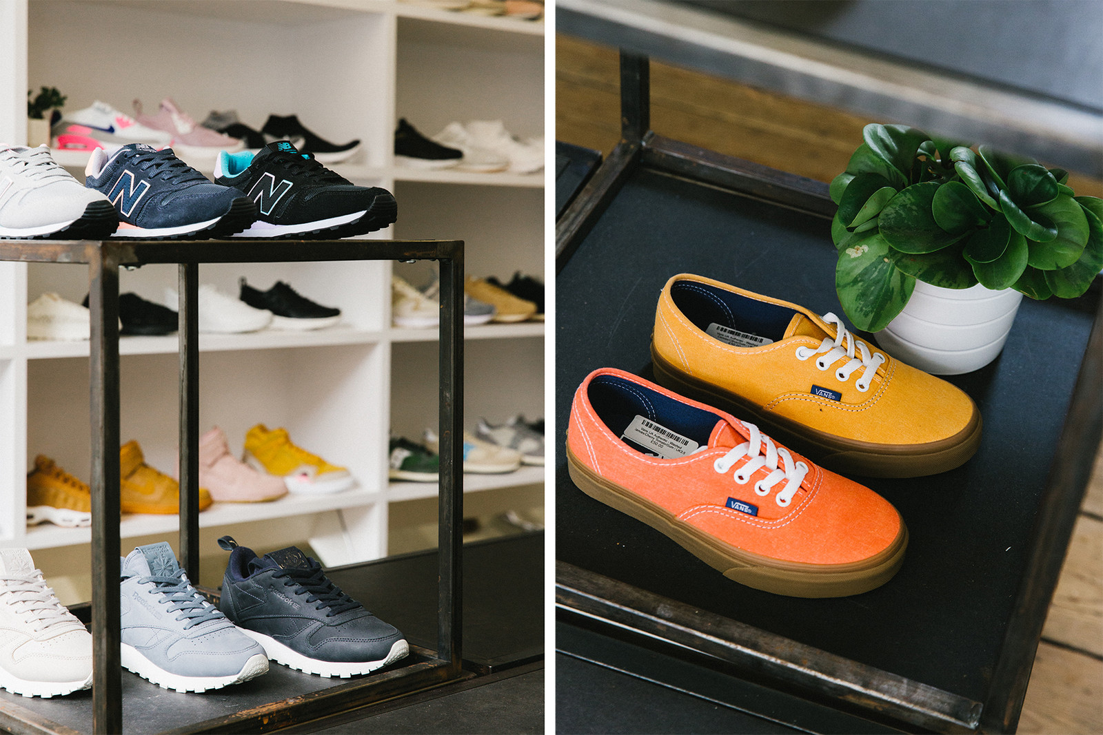 Sneaker 101 with Pam Pam London nike adidas saucony vans
