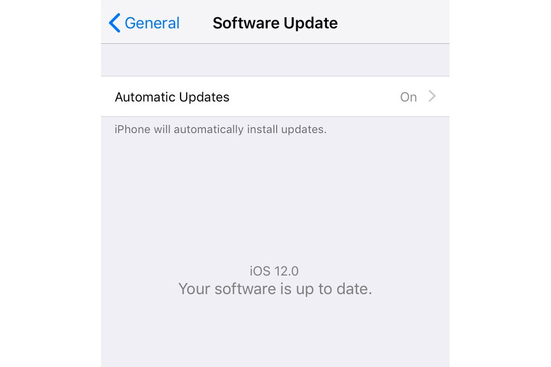 Apple iOS 12 New Hidden Settings Revealed iPhone XS iPhone XR new