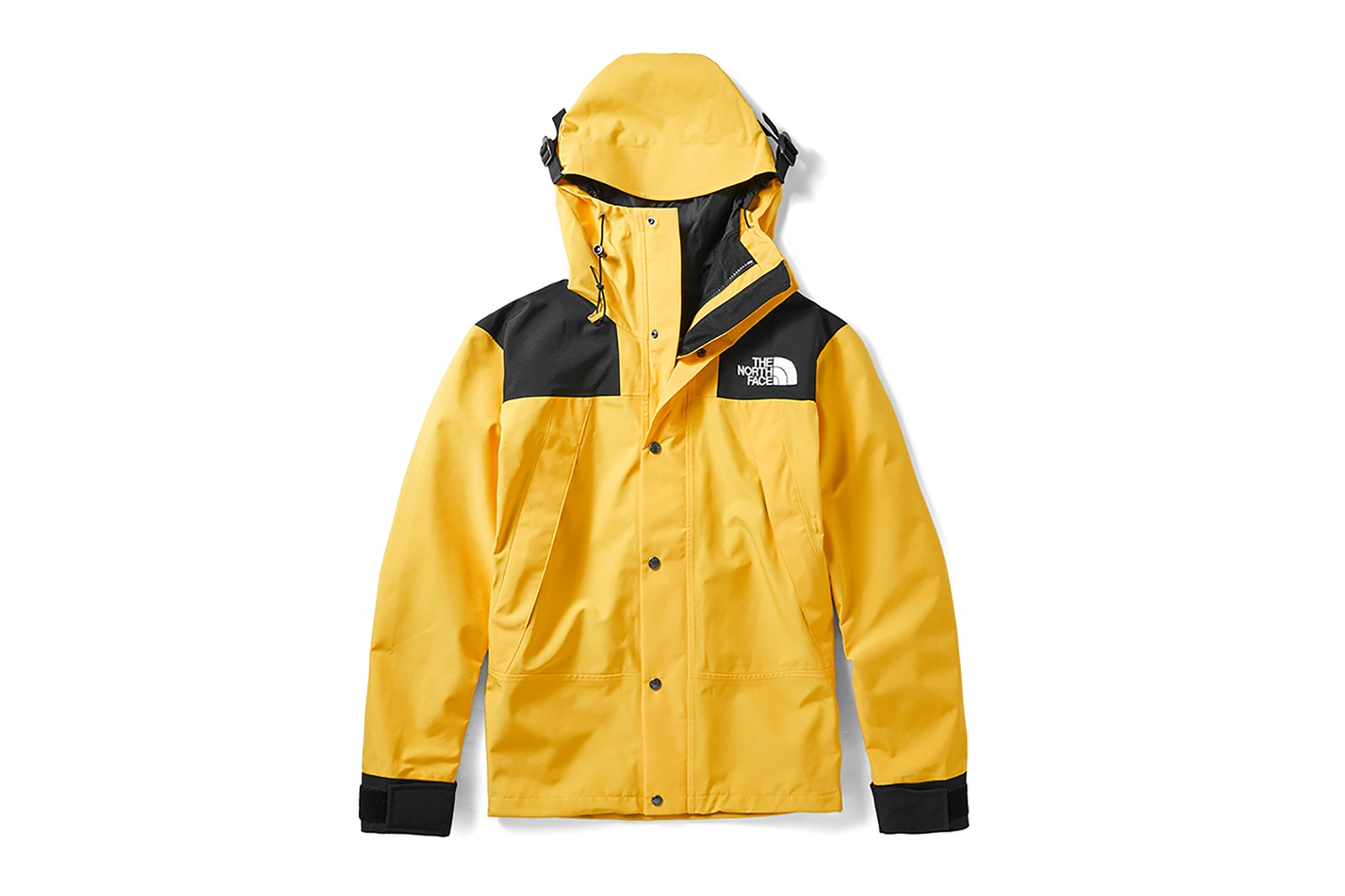The North Face Her Exploration 1990 Mountain Jackets Futurelight