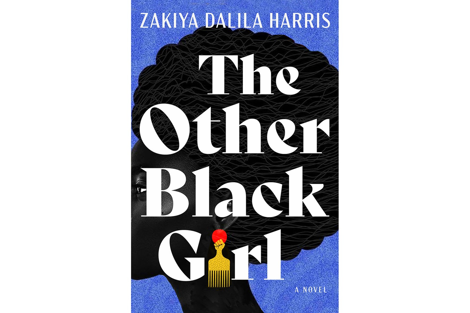 The Other Black Girl Zakiya Dalila Harris While Justice Sleeps Stacey Abrams Klara and the Sun Kazuo Ishiguro White Feminism From the Suffragettes to Influencers and Who They Leave Behind Koa Beck Gay Bar Why We Went Out Jeremy Atherton Lin