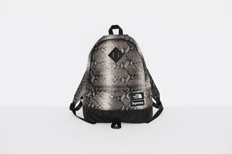 Supreme x The North Face 2018 春夏「Snake-Print」系列正式發布