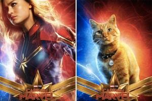竟然有一隻貓?《Captain Marvel》最新電影角色海報圖輯釋出