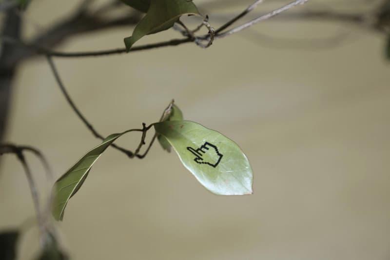 台灣藝術家 JOHN YUYI 最新藝術裝置《我樹著打給你》資訊放送