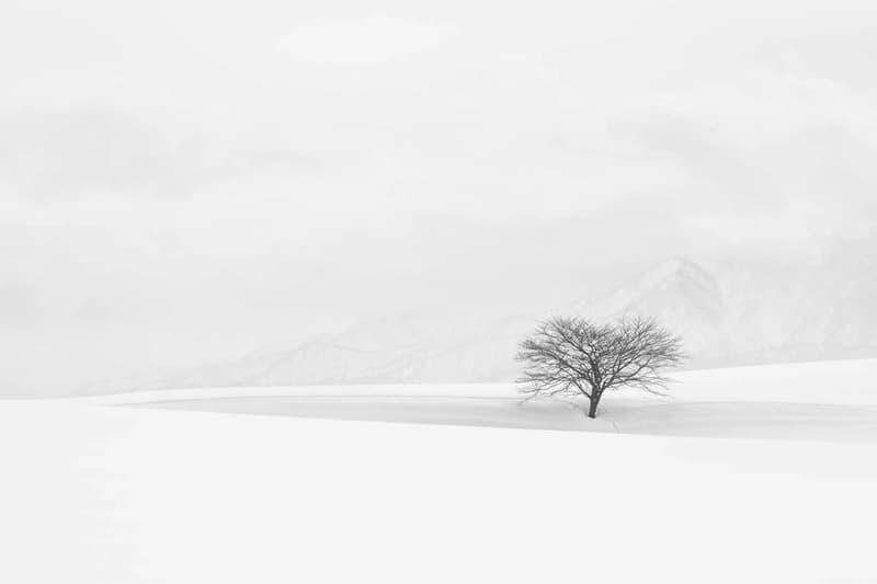 搶先近賞國際年度風景攝影師比賽得獎之作