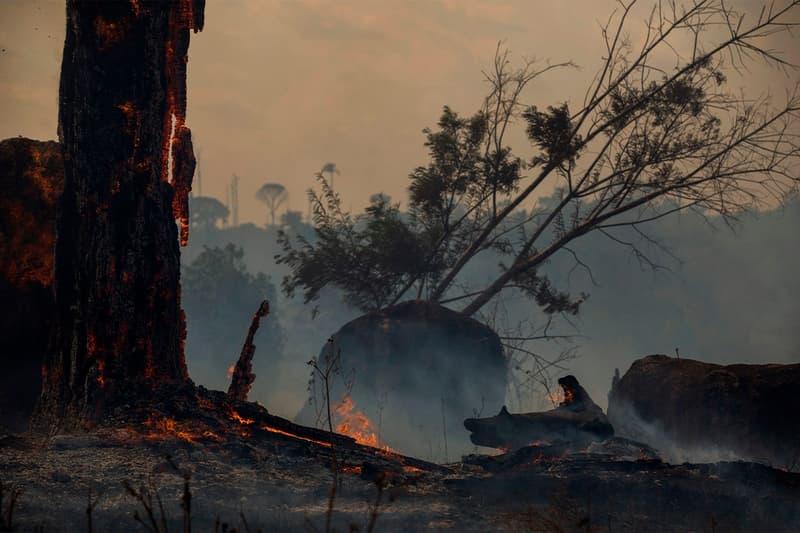 報導指出「製鞋業」或許是造成亞馬遜森林大火的主要來源之一