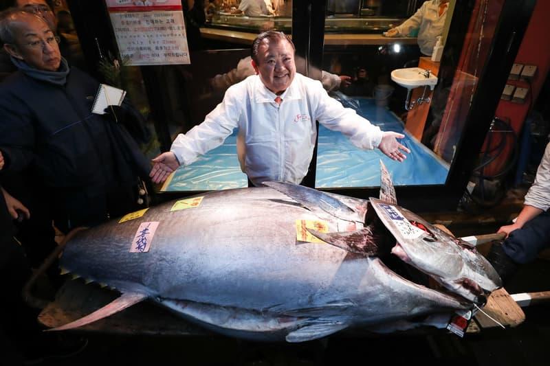 東京豐洲市場「日本一」藍鰭吞拿魚競投以歷來第二高價 175 萬美元成交