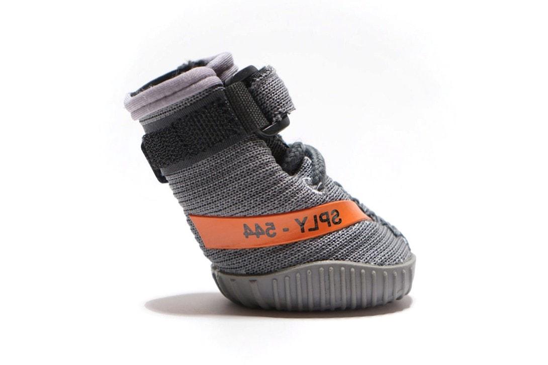 Fresh Pawz 推出全新 YEEZY 主題寵物用鞋套