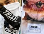 Palace 攜手傳奇攝影師 Juergen Teller 打造最新聯名系列