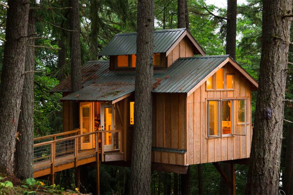 Explore the Homes of Adults Who Live In Treehouses