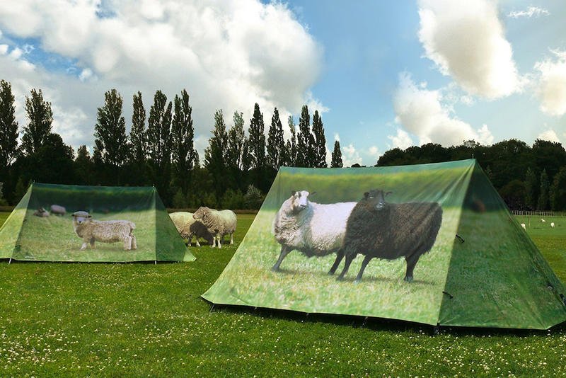 these tongue in cheek tent designs are sure to make you stand out