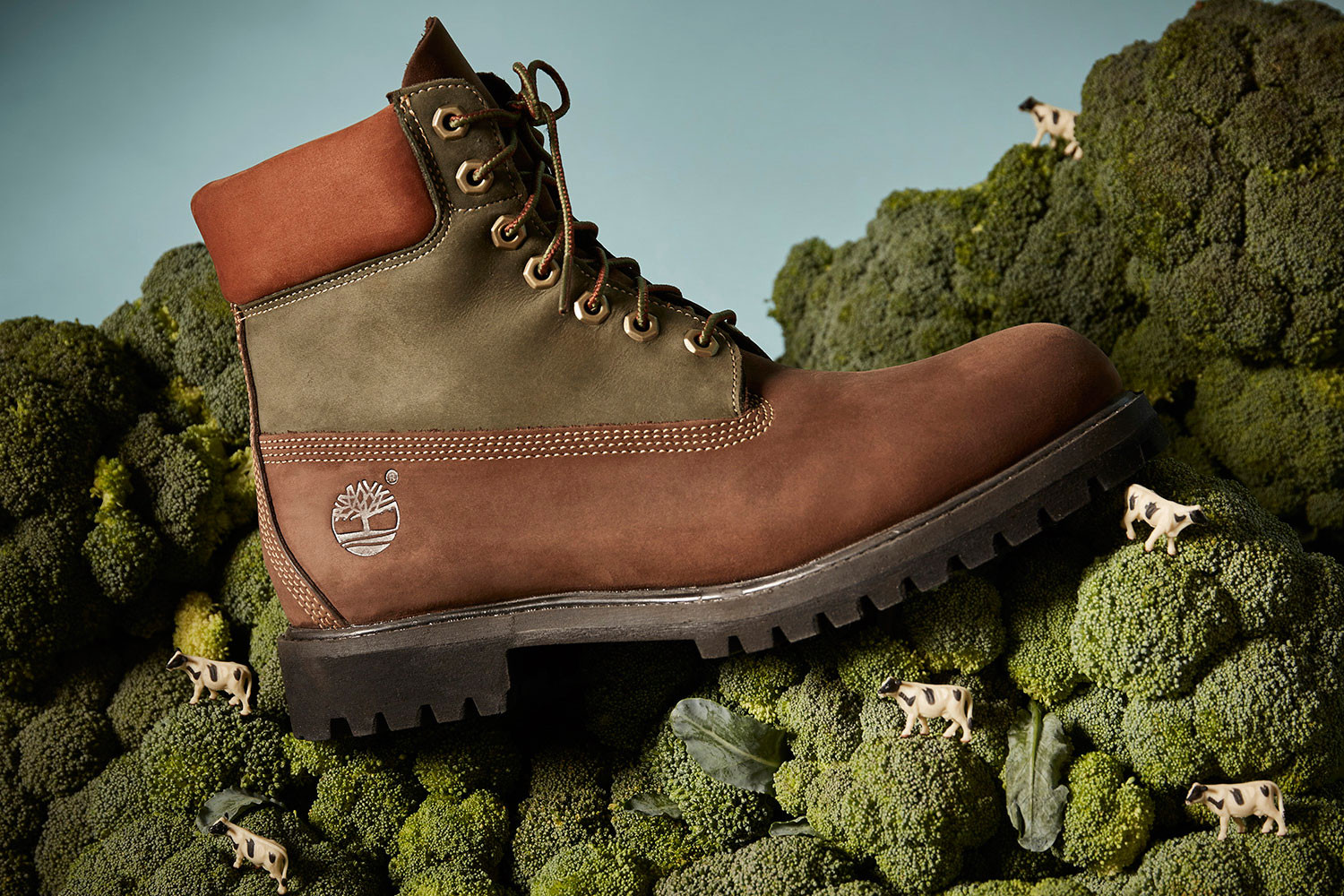 Timberland 6 Inch Beef and Broccoli