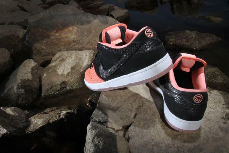 643bbf45391d Premier Nike SB Fish Ladder Collection