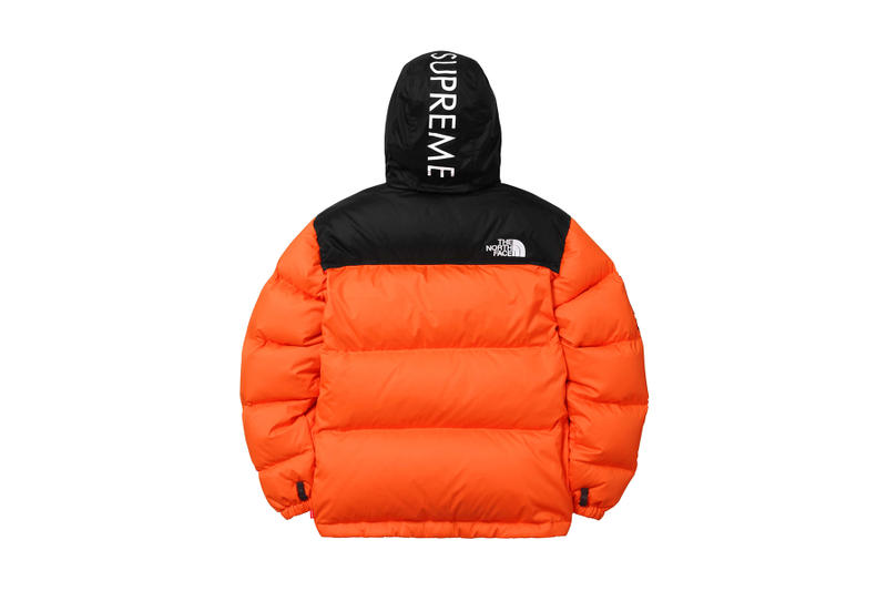 Supreme x The North Face 2016 Fall Winter Collection  36742652c