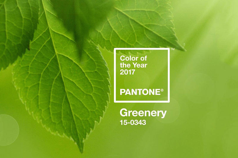 Pantone Color of the Year 2017 Announcement Greenery Green
