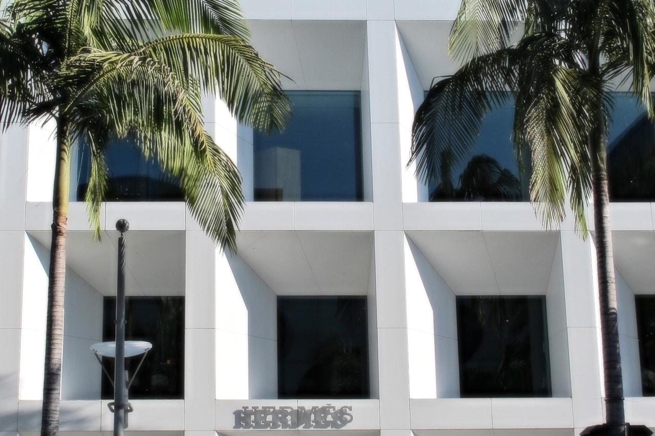 Hermes Saint Laurent Palm Trees Streetwear