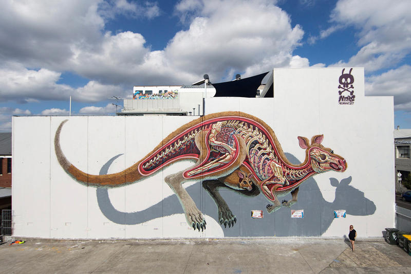 Nychos Anatomically Correct Bisected Animal Murals