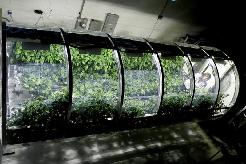 NASA Inflatable Greenhouse