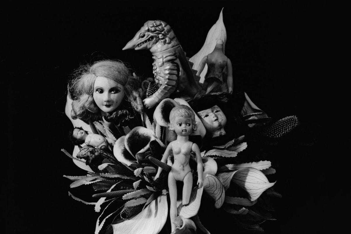 Daniel Arsham David Black Nobuyoshi Araki Exhibits Installations Arts Shows