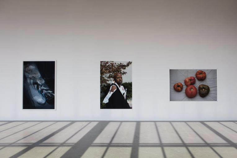 Wolfgang Tillmans Art Photography Exhibition Hamburg Kunstverein Frank Ocean