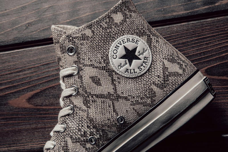 Converse Chuck Taylor All Star Hi Low Snakeskin Colorway