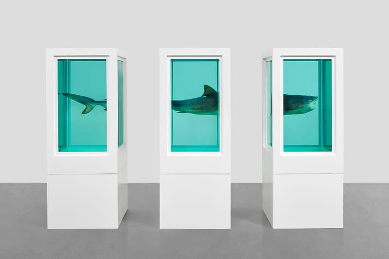 Damien Hirst Gagosian Hong Kong Visual Candy and Natural History Exhibition Shark Cow