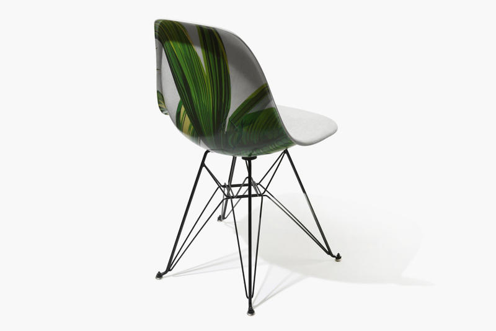 Garrett Leight & Modernica Collaborate on Palm-Themed Chair