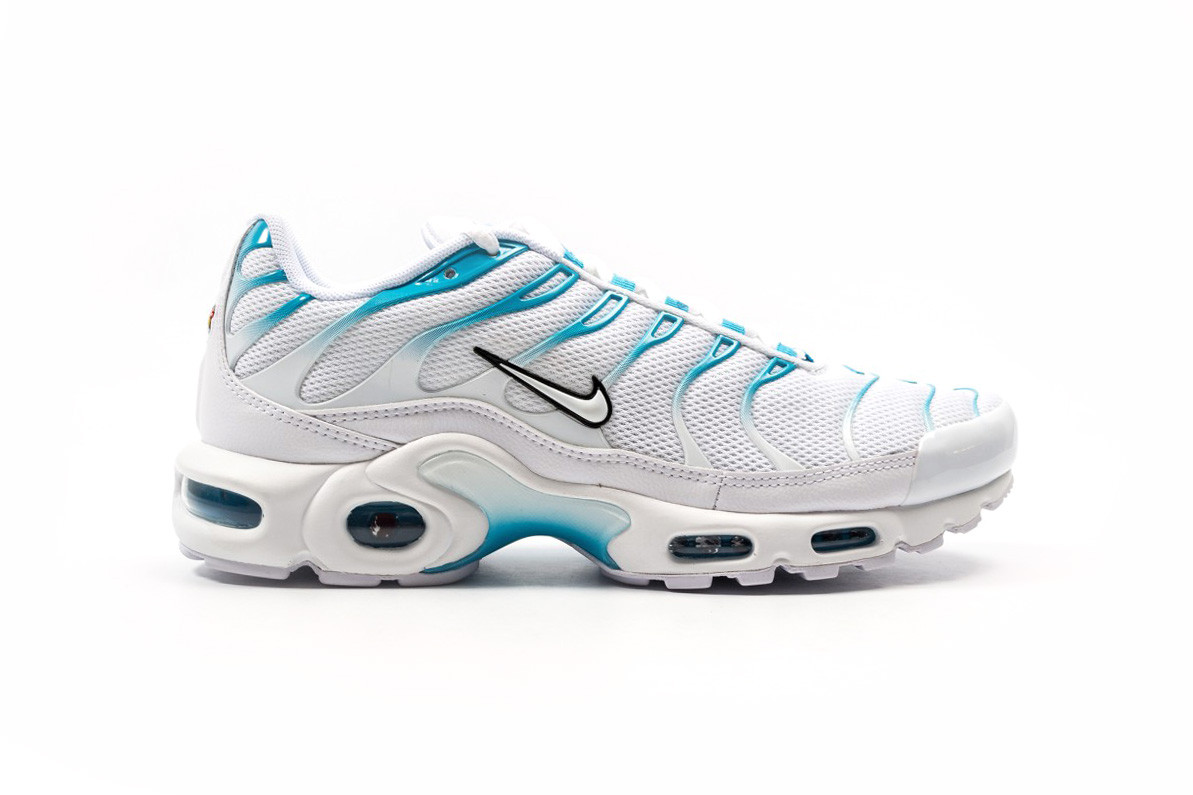 Nike Air Max Plus Blue Fury