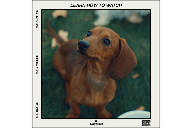 DJ Carnage Mac Miller Madeintyo Learn How to Watch New Music single song stream dog brown dachshund puppy
