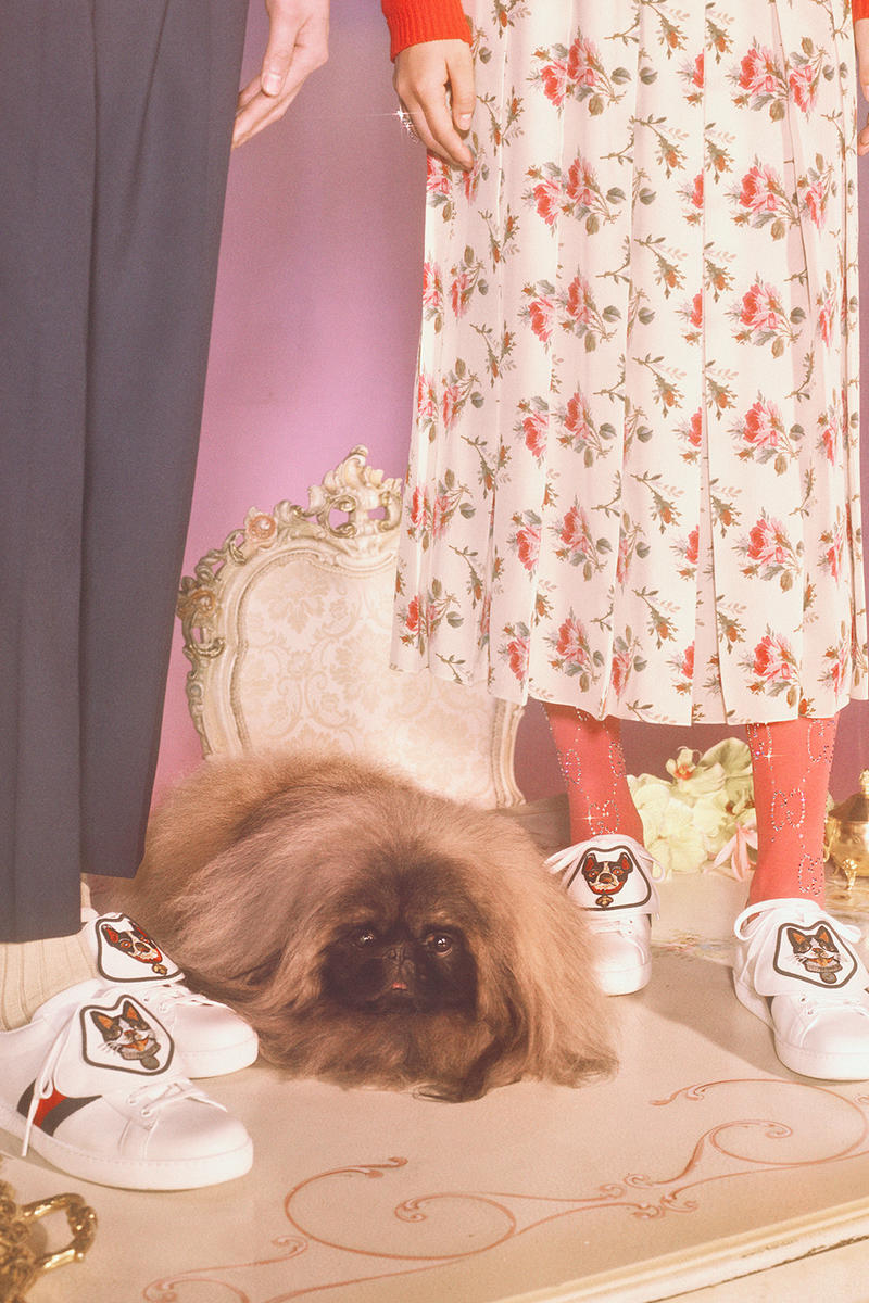 Gucci Chinese New Year Capsule Collection Zodiac Year of The Dog Petra Collins