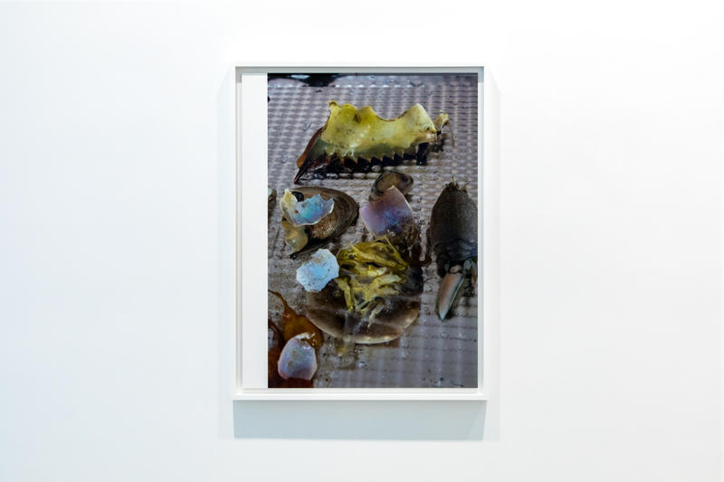 wolfgang tillmans david zwirner hong kong exhibit exhibition art artwork