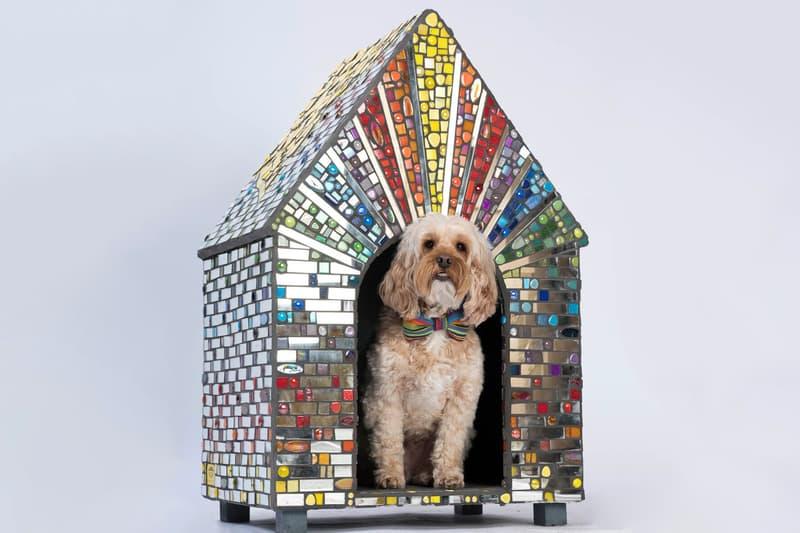 zaha hadid architects spark octopi dog kennels bowwow haus london pets dogs canines design