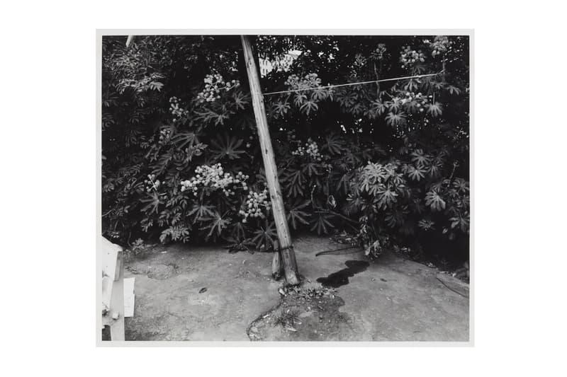Nobuyoshi Araki Vintage Prints film photos Taka Ishii New York