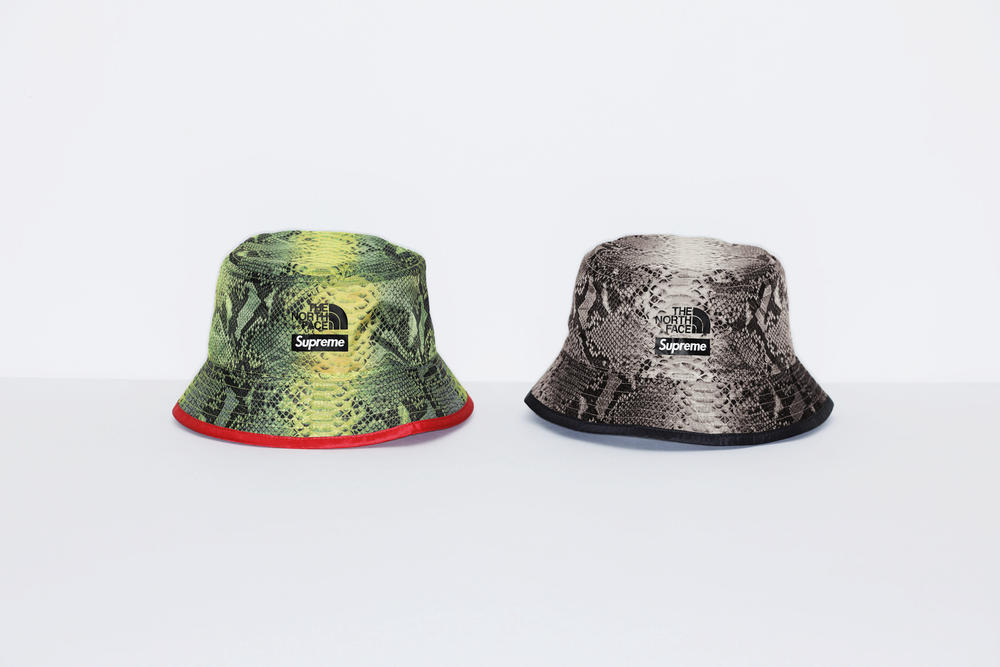 Supreme The North Face Snake Print Reversible Crusher Spring Collection