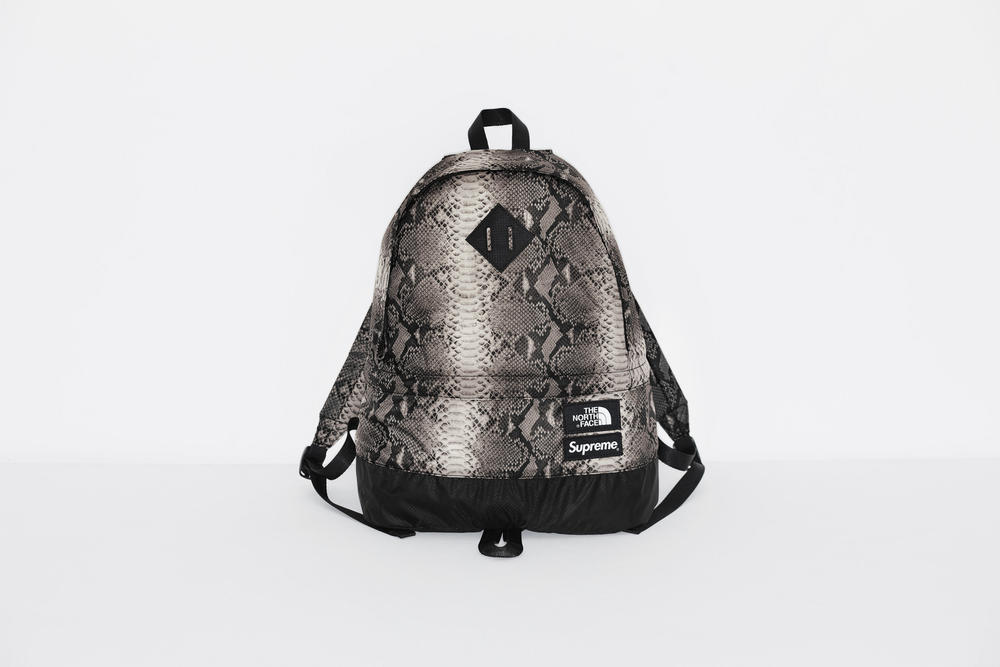 Supreme The North Face Snake Print Lightweight Day Pack Spring Collection