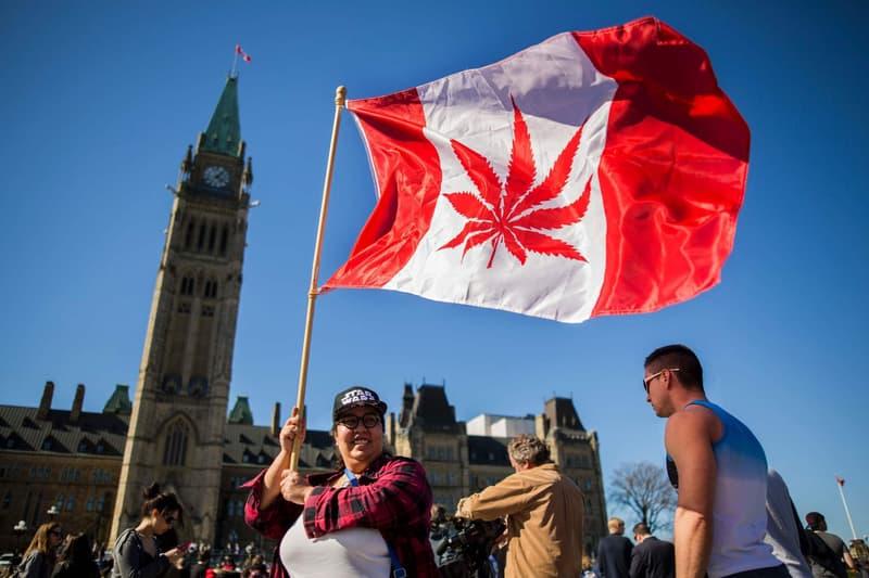 canada marijuana flag maple leaf cannabis recreational medical legalize bill law National Day Parliament Hill Ottawa April 20 2016