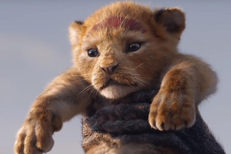 Lion King Remake Trailer Sets Disney Record JTT movies trailers Hollywood entertainment films Mustafa