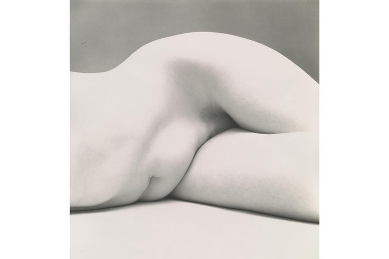 pace hong kong irving penn exhibition artworks photographs paintings