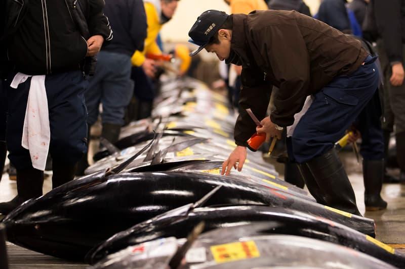 Tsukiji Fish Market Record Tuna Auction Price Japan Tokyo seafood
